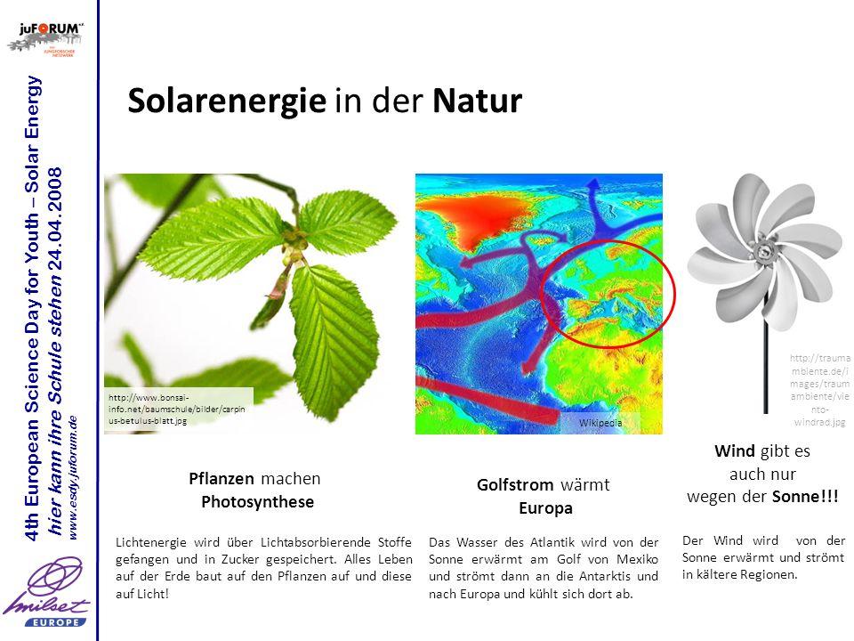 Solarenergie in der Technik Solarzellen sind wie die Blätter Solarkollektoren können Luft oder Wasser wärmen Lichtenergie wird über Lichtabsorbierende Stoffe gefangen und in Strom gewandelt.