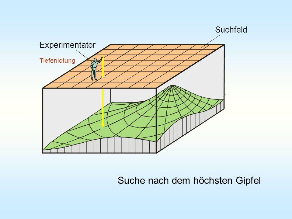 Suche nach dem höchsten Gipfel Tiefenlotung Experimentator Suchfeld