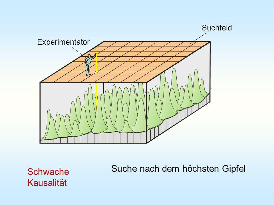Experimentator Suchfeld Suche nach dem höchsten Gipfel Schwache Kausalität