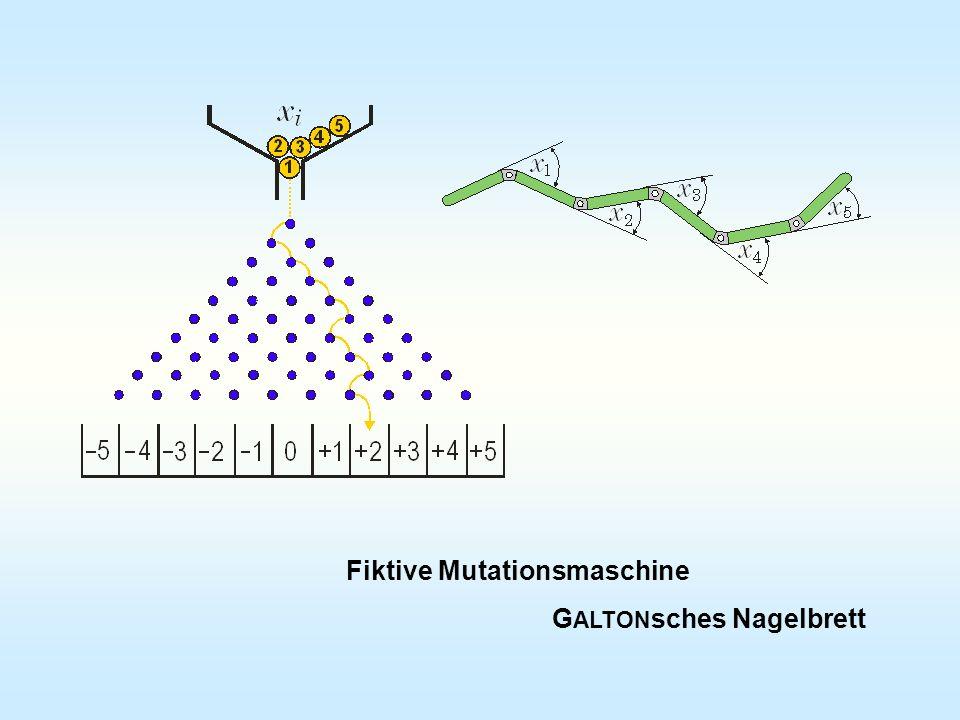 Fiktive Mutationsmaschine G ALTON sches Nagelbrett