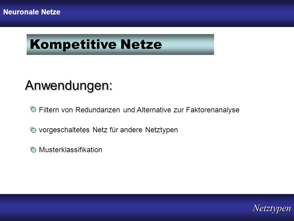 Kompetitive Netze Anwendungen: Filtern von Redundanzen und Alternative zur Faktorenanalyse vorgeschaltetes Netz für andere Netztypen Musterklassifikat