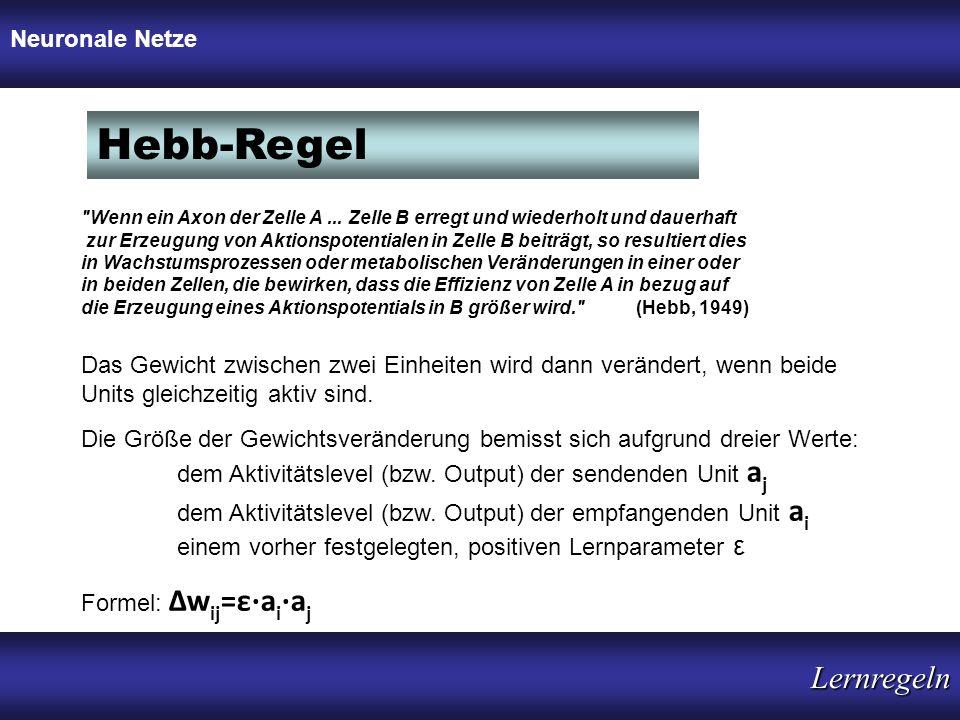 Hebb-Regel Neuronale Netze