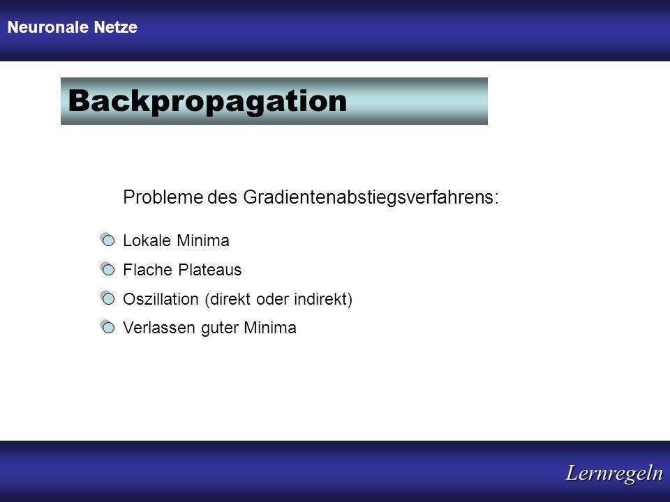 Probleme des Gradientenabstiegsverfahrens: Lokale Minima Flache Plateaus Oszillation (direkt oder indirekt) Verlassen guter Minima Neuronale Netze Bac