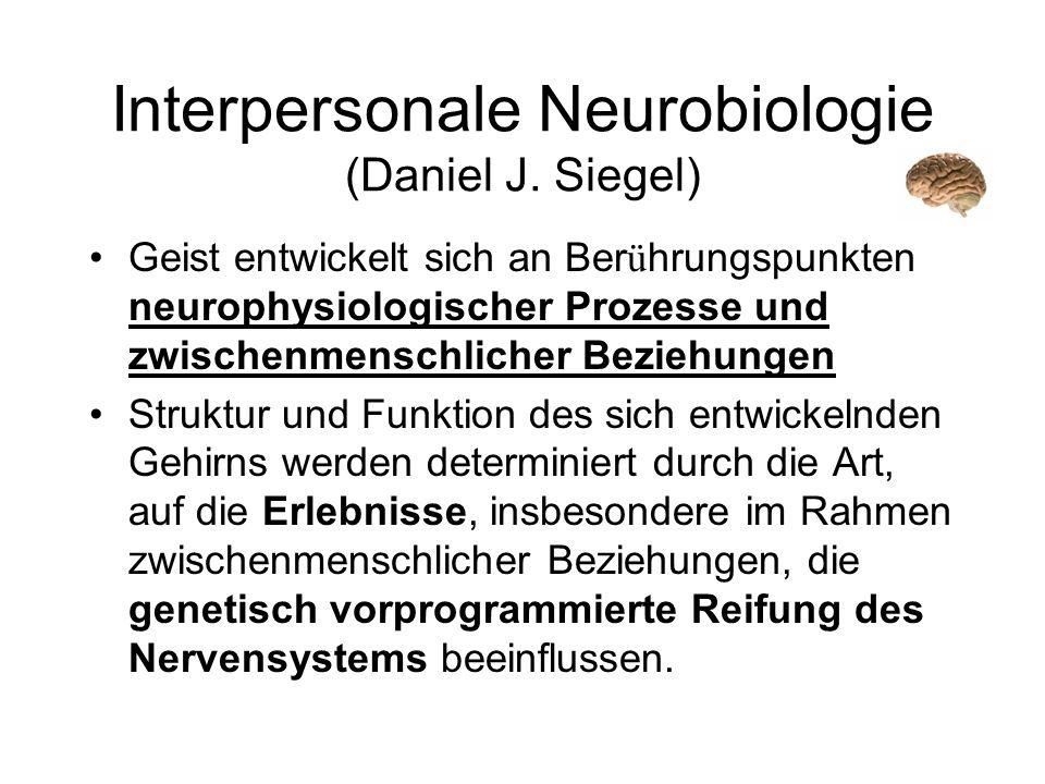 Interpersonale Neurobiologie (Daniel J. Siegel) Geist entwickelt sich an Ber ü hrungspunkten neurophysiologischer Prozesse und zwischenmenschlicher Be
