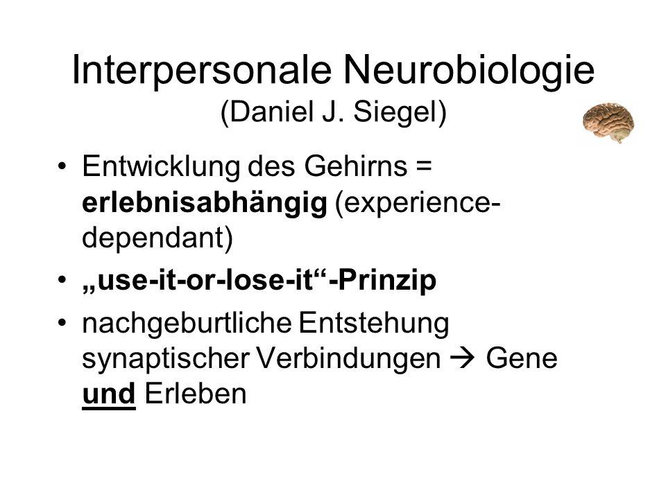 Interpersonale Neurobiologie (Daniel J. Siegel) Entwicklung des Gehirns = erlebnisabhängig (experience- dependant) use-it-or-lose-it-Prinzip nachgebur