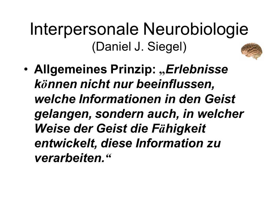 Interpersonale Neurobiologie (Daniel J. Siegel) Allgemeines Prinzip: Erlebnisse k ö nnen nicht nur beeinflussen, welche Informationen in den Geist gel