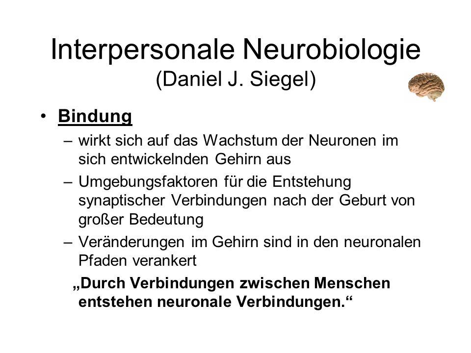 Interpersonale Neurobiologie (Daniel J. Siegel) Bindung –wirkt sich auf das Wachstum der Neuronen im sich entwickelnden Gehirn aus –Umgebungsfaktoren