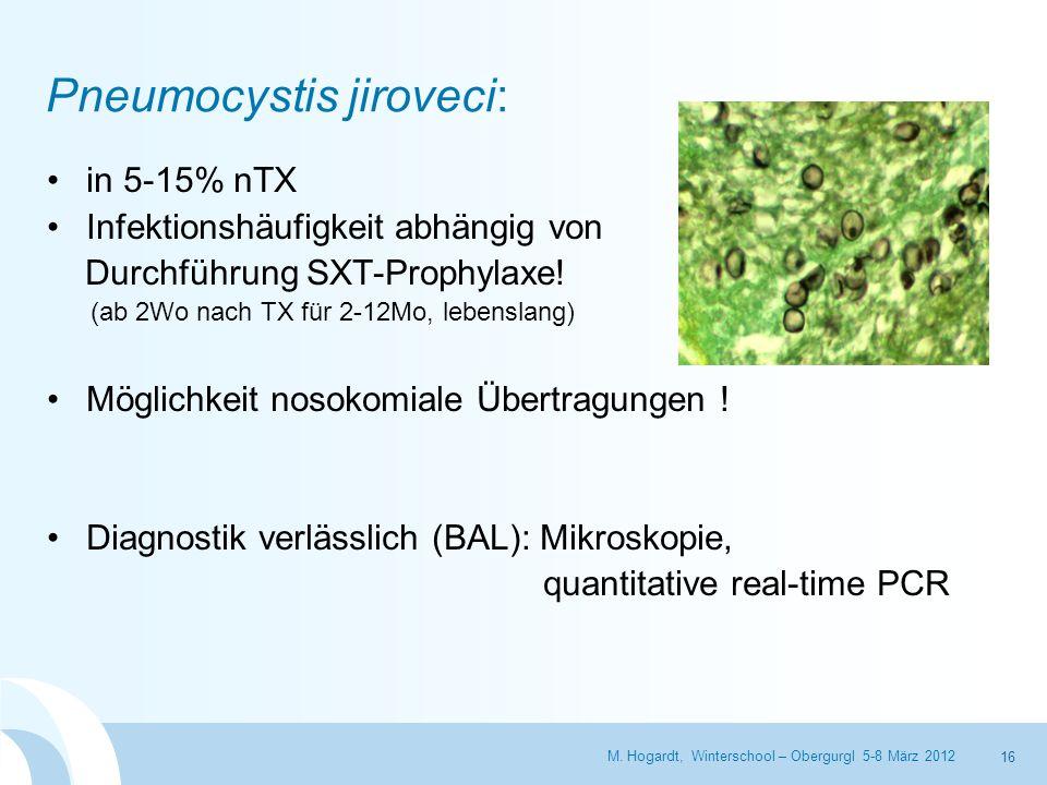 Pneumocystis jiroveci: in 5-15% nTX Infektionshäufigkeit abhängig von Durchführung SXT-Prophylaxe! (ab 2Wo nach TX für 2-12Mo, lebenslang) Möglichkeit