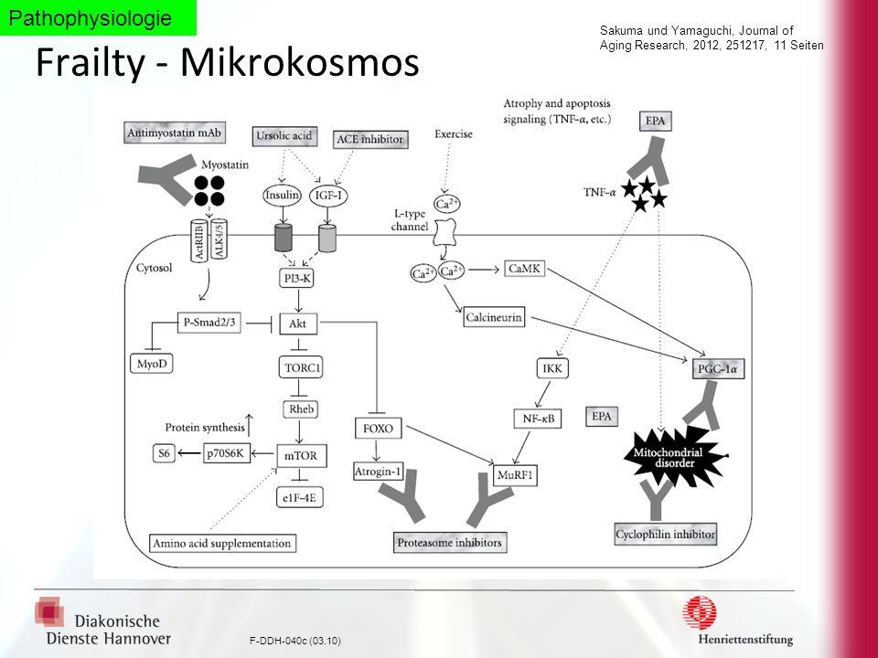 F-DDH-040c (03.10) Frailty - Mikrokosmos Sakuma und Yamaguchi, Journal of Aging Research, 2012, 251217, 11 Seiten Pathophysiologie