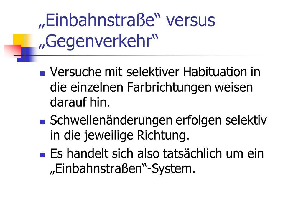 Einbahnstraße versus Gegenverkehr Versuche mit selektiver Habituation in die einzelnen Farbrichtungen weisen darauf hin. Schwellenänderungen erfolgen