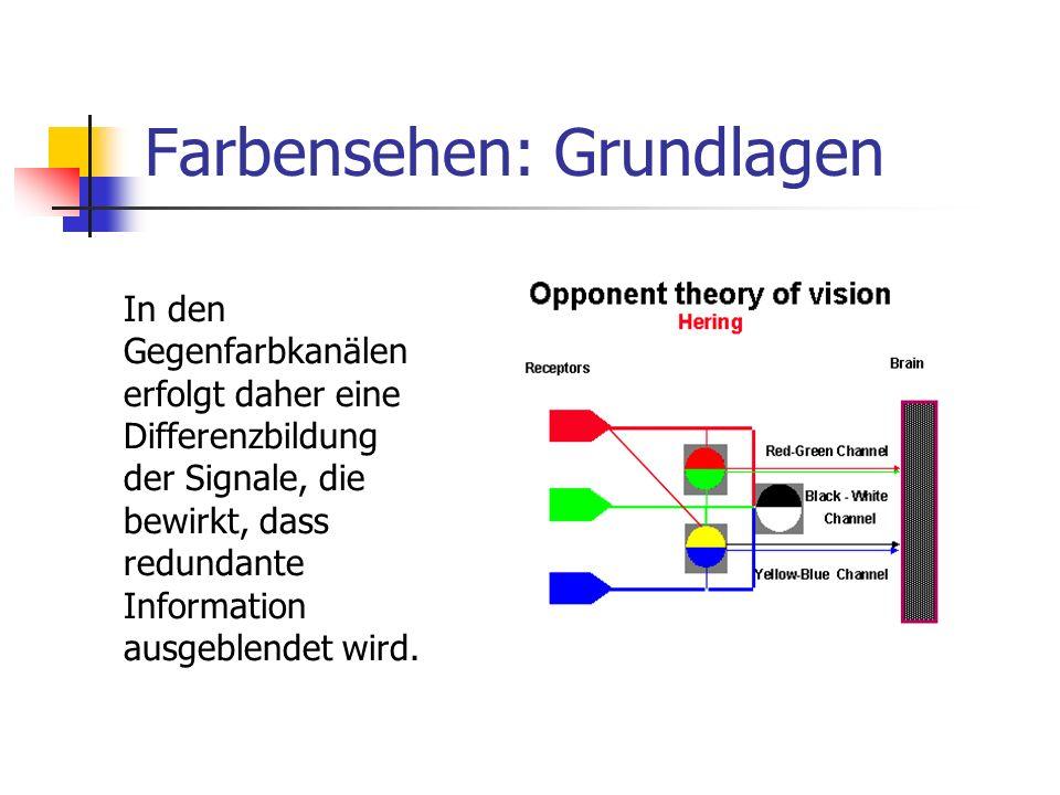 Farbensehen: Grundlagen In den Gegenfarbkanälen erfolgt daher eine Differenzbildung der Signale, die bewirkt, dass redundante Information ausgeblendet