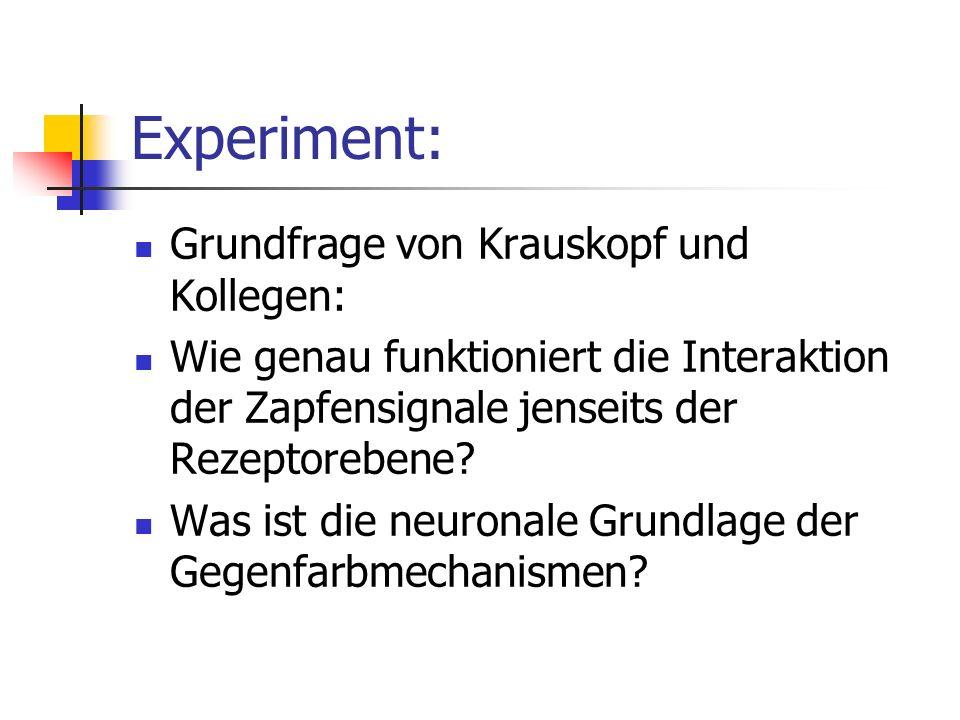Experiment: Grundfrage von Krauskopf und Kollegen: Wie genau funktioniert die Interaktion der Zapfensignale jenseits der Rezeptorebene? Was ist die ne