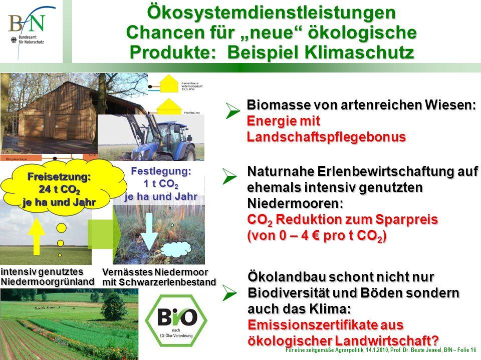 Für eine zeitgemäße Agrarpolitik, 14.1.2010, Prof. Dr. Beate Jessel, BfN – Folie 16 Biomasse von artenreichen Wiesen: Energie mit Landschaftspflegebon