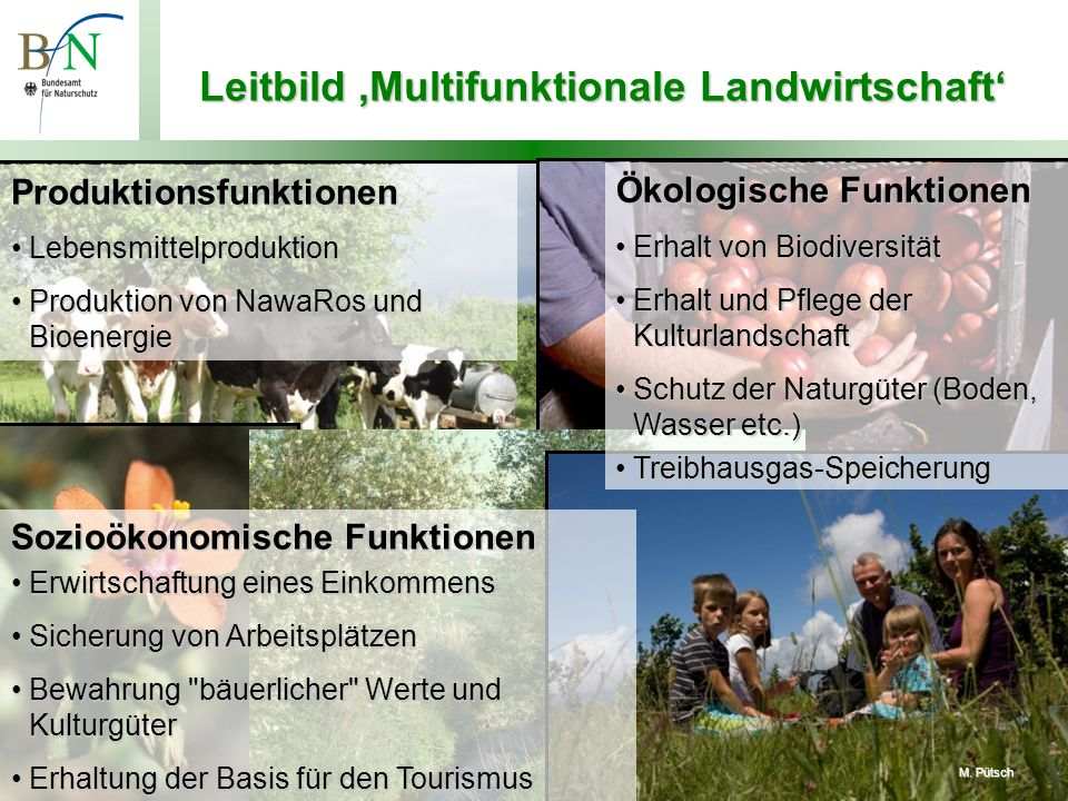 Für eine zeitgemäße Agrarpolitik, 14.1.2010, Prof. Dr. Beate Jessel, BfN – Folie 4 S. Stein J. Schiller www.oekolandbau.de Leitbild Multifunktionale L