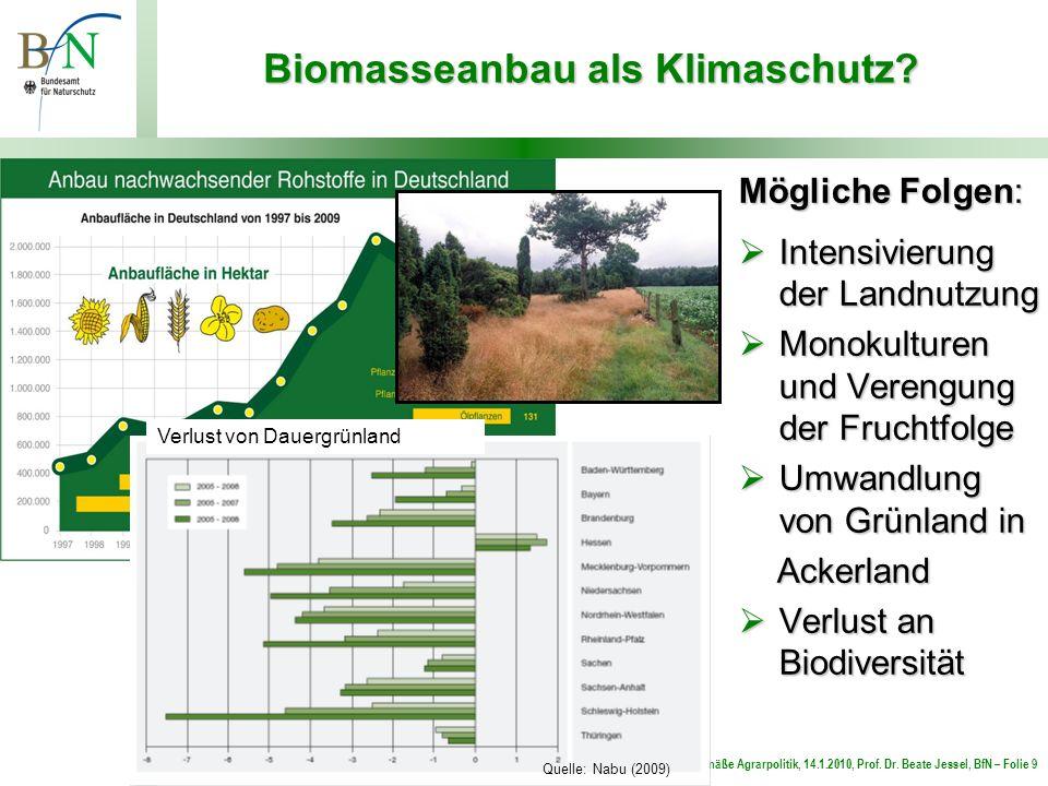 Für eine zeitgemäße Agrarpolitik, 14.1.2010, Prof. Dr. Beate Jessel, BfN – Folie 9 Biomasseanbau als Klimaschutz? Mögliche Folgen: Intensivierung der