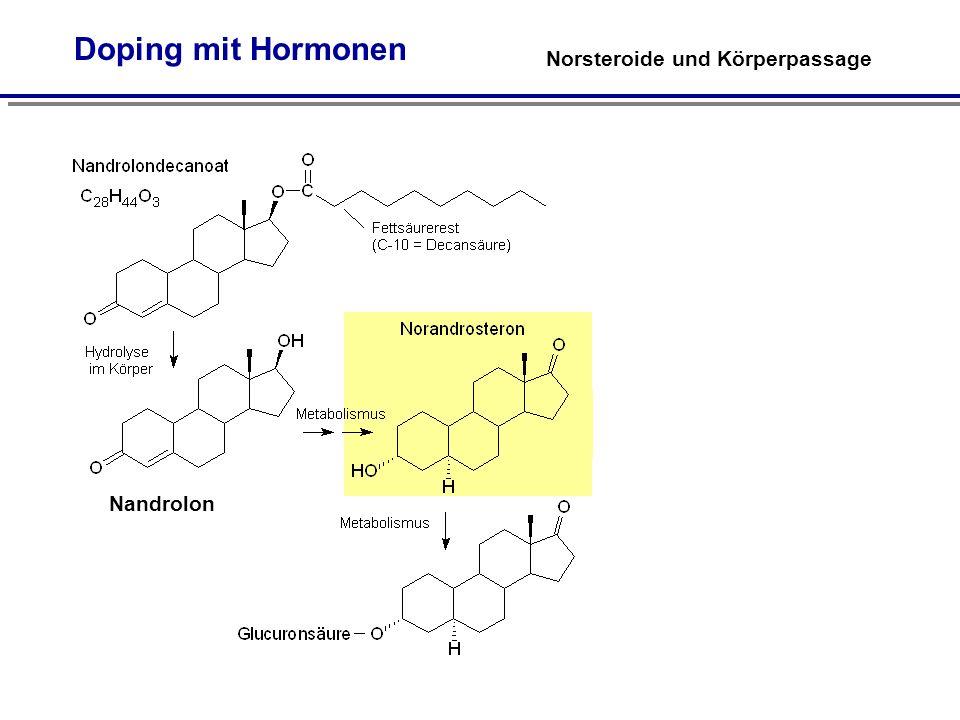 Norsteroide und Körperpassage Doping mit Hormonen Nandrolon