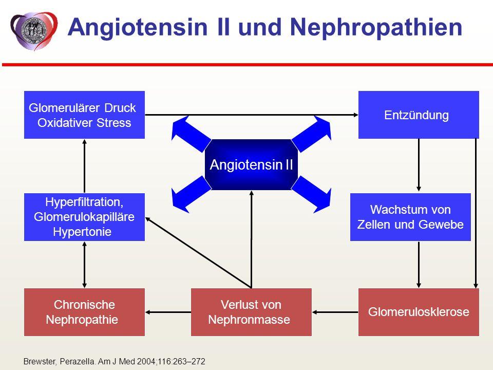 Angiotensin II und Nephropathien Glomerulosklerose Hyperfiltration, Glomerulokapilläre Hypertonie Glomerulärer Druck Oxidativer Stress Chronische Neph