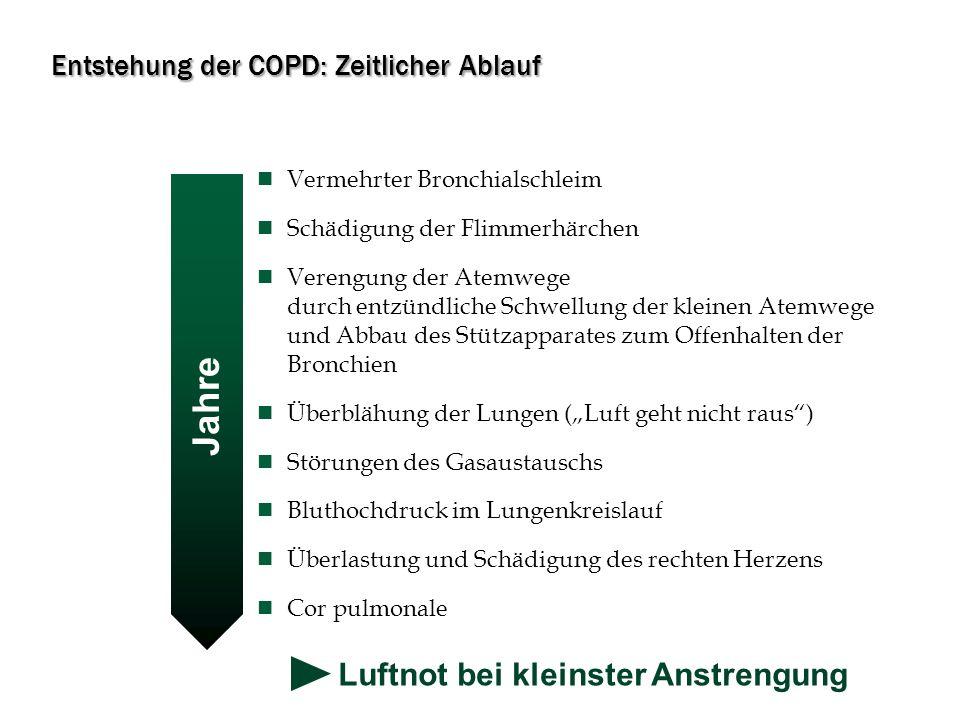 Entstehung der COPD: Zeitlicher Ablauf Vermehrter Bronchialschleim Schädigung der Flimmerhärchen Verengung der Atemwege durch entzündliche Schwellung