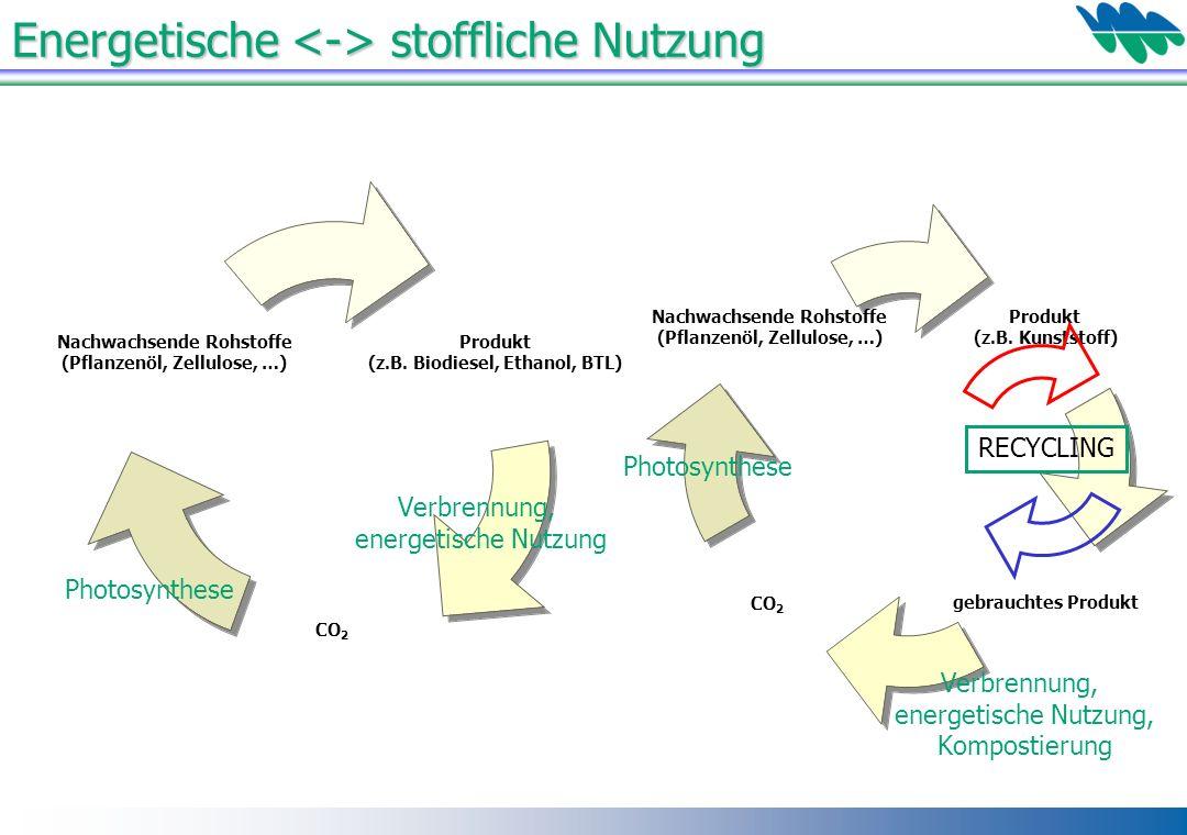 Energetische stoffliche Nutzung Verbrennung, energetische Nutzung, Kompostierung Photosynthese Verbrennung, energetische Nutzung Photosynthese RECYCLI