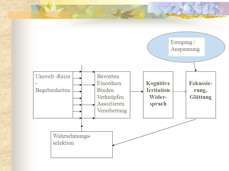 Umwelt -Reize - Begebenheiten Bewerten Einordnen Binden Verknüpfen Assoziieren Verarbeitung Kognitive Irritation Wider- spruch Wahrnehmungs- selektion