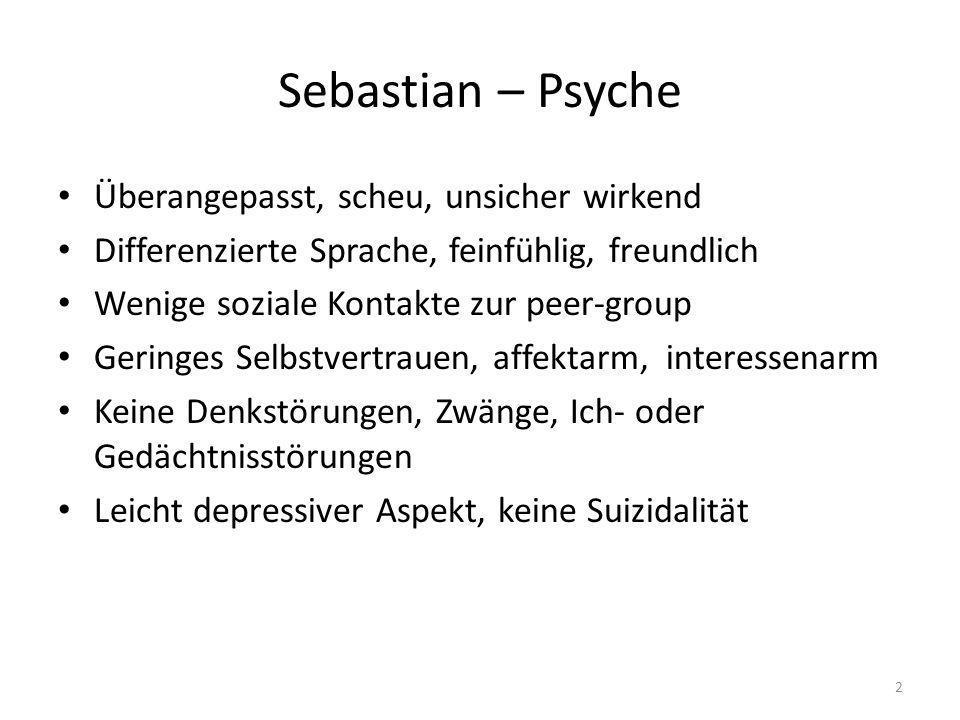 Sebastian – Psyche Überangepasst, scheu, unsicher wirkend Differenzierte Sprache, feinfühlig, freundlich Wenige soziale Kontakte zur peer-group Gering