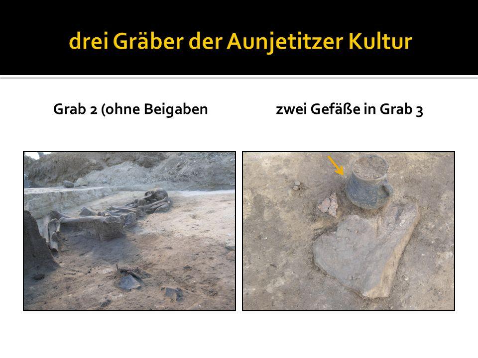 Grab 2 (ohne Beigabenzwei Gefäße in Grab 3