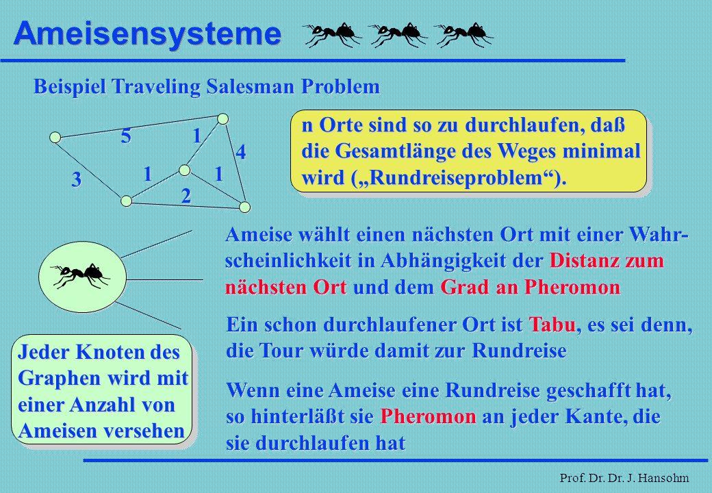 Prof. Dr. Dr. J. Hansohm Ameisensysteme l Ameisen hinterlassen auf ihrem Weg ein Pheromon l andere Ameisen gehen mit höherer Wahrscheinlichkeit einen