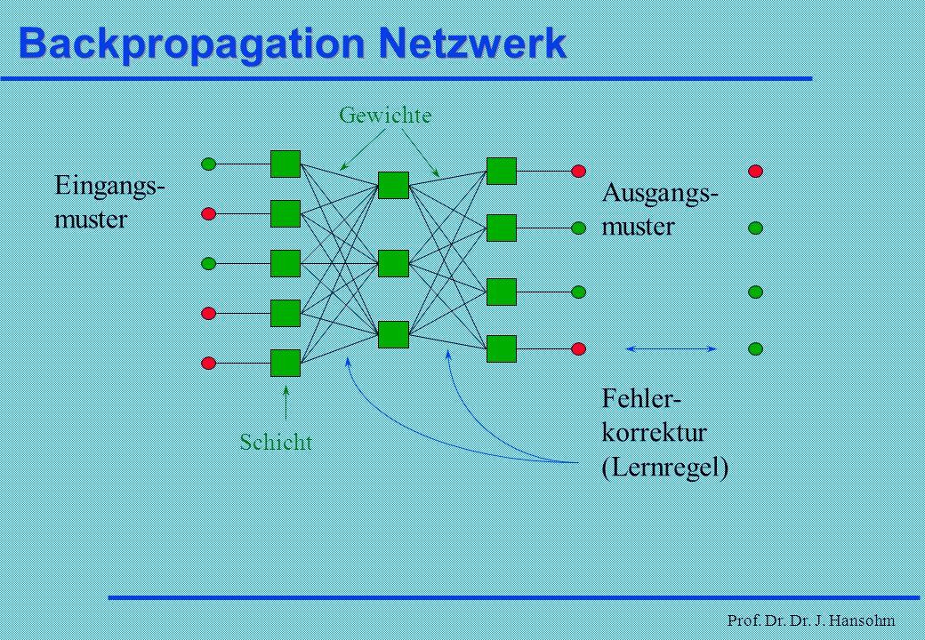 Prof. Dr. Dr. J. Hansohm Formen von Neuronalen Netzen (NN) Selbstorganisierende Netze Selbstorganisierende Netze Feed Forward Netze Eingangsschicht Au