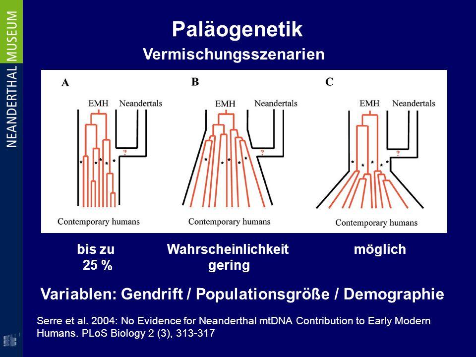 Paläogenetik Serre et al. 2004: No Evidence for Neanderthal mtDNA Contribution to Early Modern Humans. PLoS Biology 2 (3), 313-317 bis zu 25 % Wahrsch