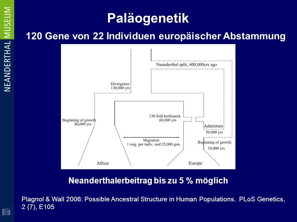 Plagnol & Wall 2006: Possible Ancestral Structure in Human Populations. PLoS Genetics, 2 (7), E105 Paläogenetik Neanderthalerbeitrag bis zu 5 % möglic