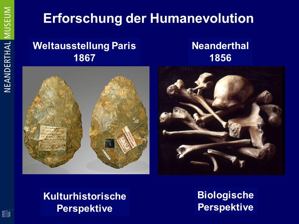 Erforschung der Humanevolution Weltausstellung Paris 1867 Neanderthal 1856 Kulturhistorische Perspektive Biologische Perspektive