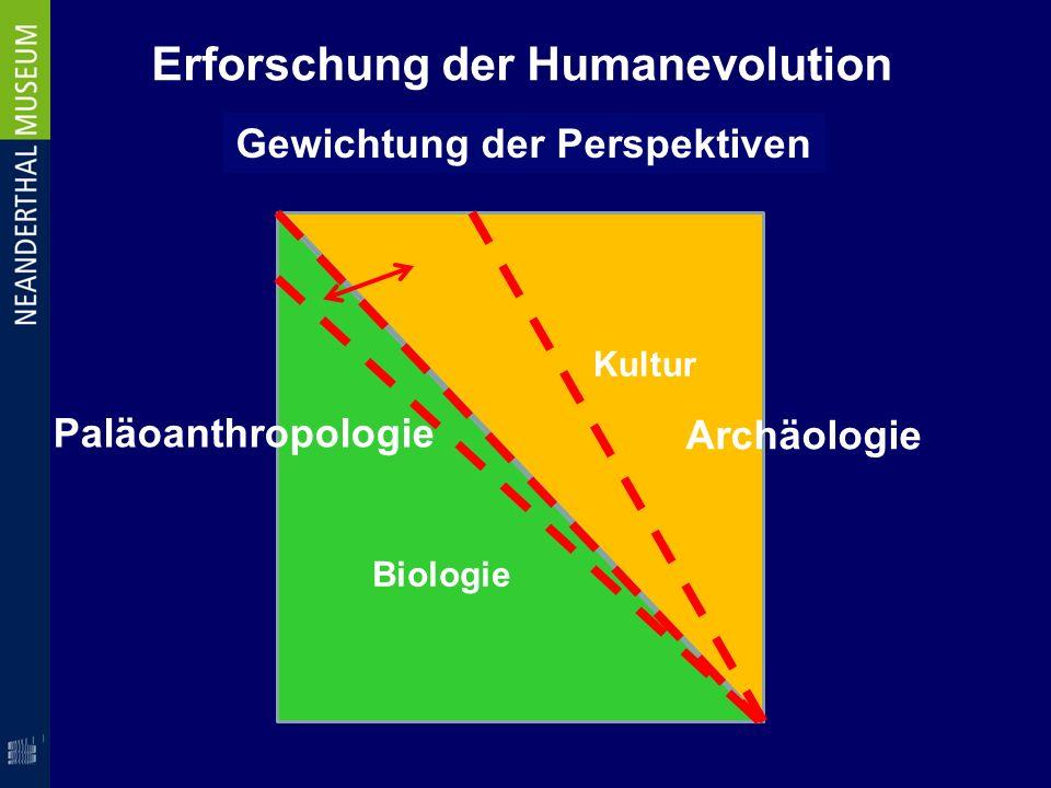 Erforschung der Humanevolution Gewichtung der Perspektiven Archäologie Paläoanthropologie Biologie Kultur