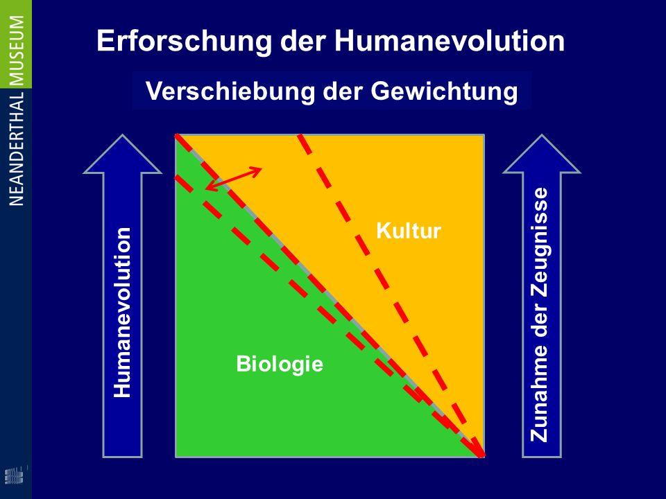 Erforschung der Humanevolution Verschiebung der Gewichtung Biologie Kultur Humanevolution Zunahme der Zeugnisse