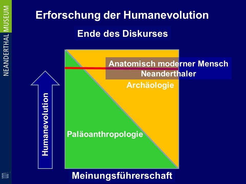 Erforschung der Humanevolution Paläoanthropologie Archäologie Humanevolution Anatomisch moderner Mensch Neanderthaler Ende des Diskurses Meinungsführe