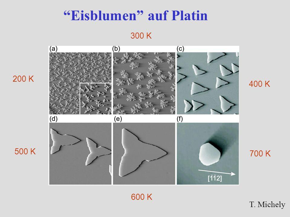 Eisblumen auf Platin T. Michely 200 K 400 K 500 K 600 K 700 K 300 K