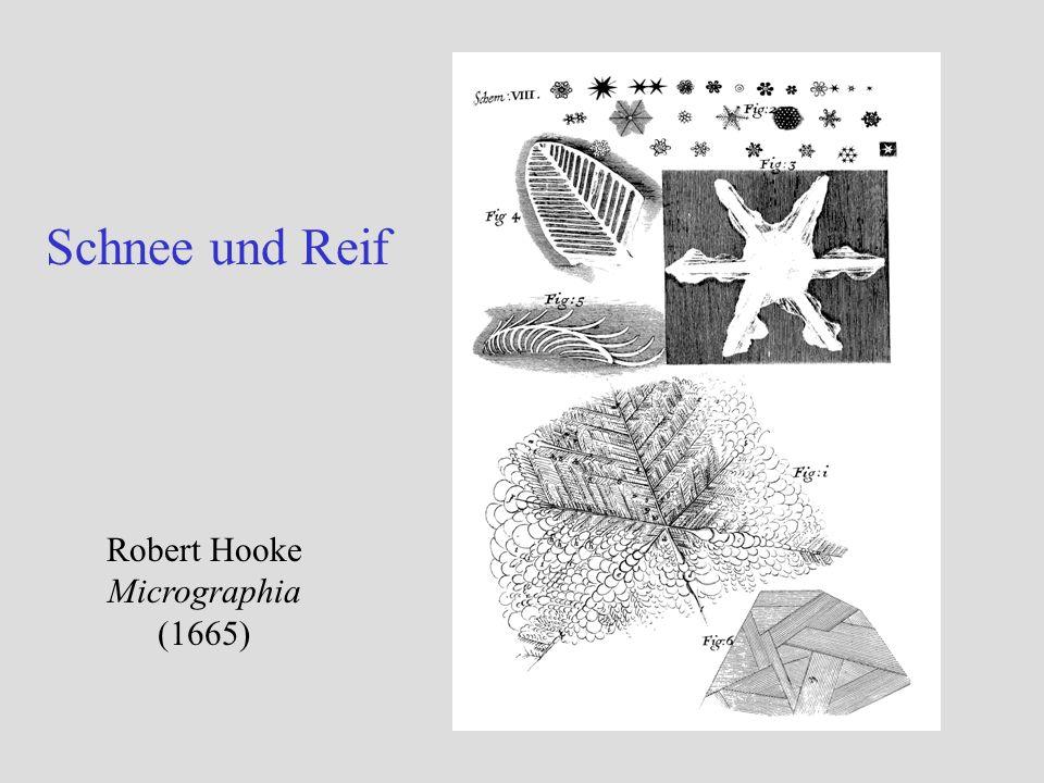 Schnee und Reif Robert Hooke Micrographia (1665)