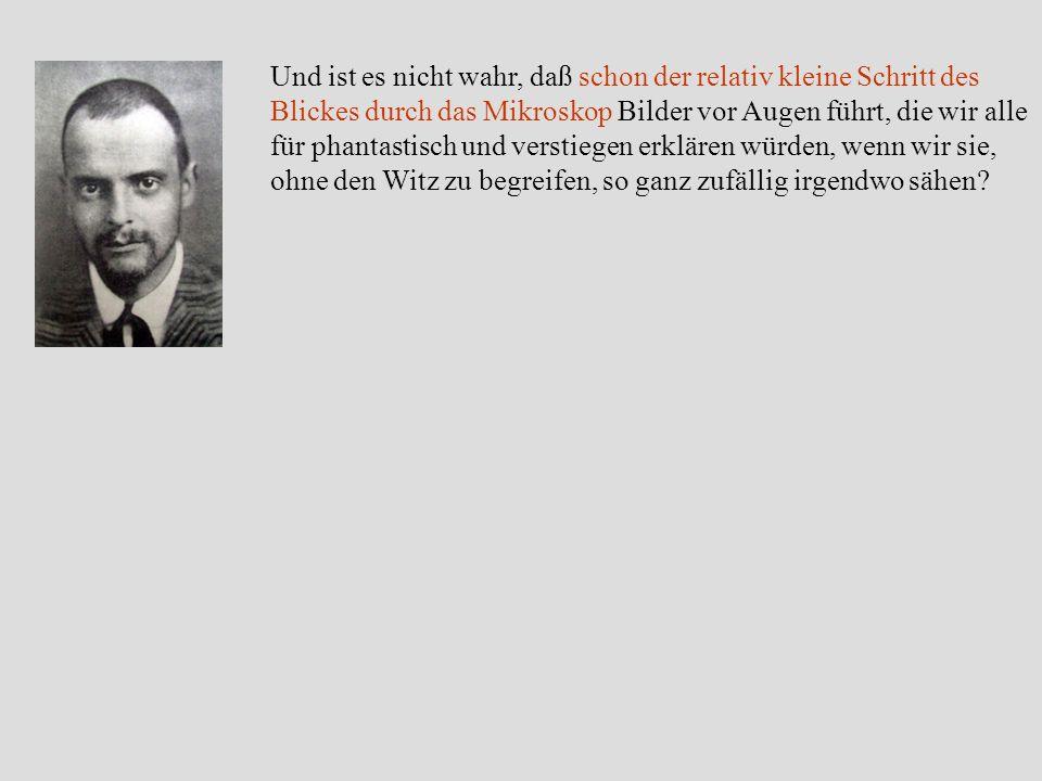 Wachstumsspiralen/Spiralwachstum Paul Klee: Heroische Rosen (1938) R. Feenstra: Galliumnitrid