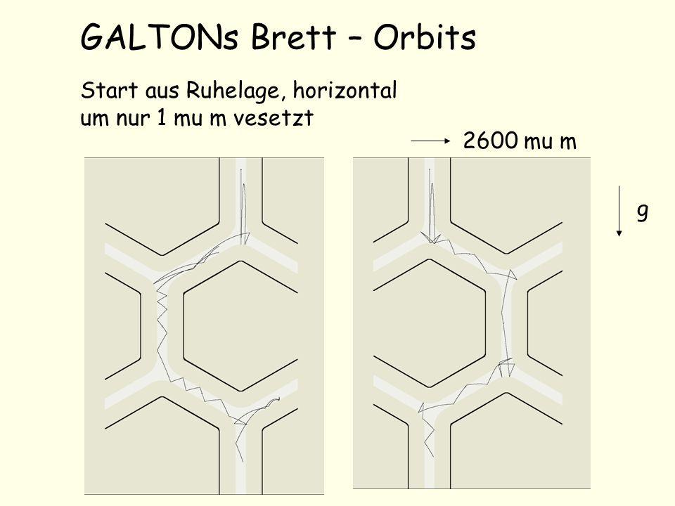 GALTONs Brett – Orbits Start aus Ruhelage, horizontal um nur 1 mu m vesetzt g 2600 mu m