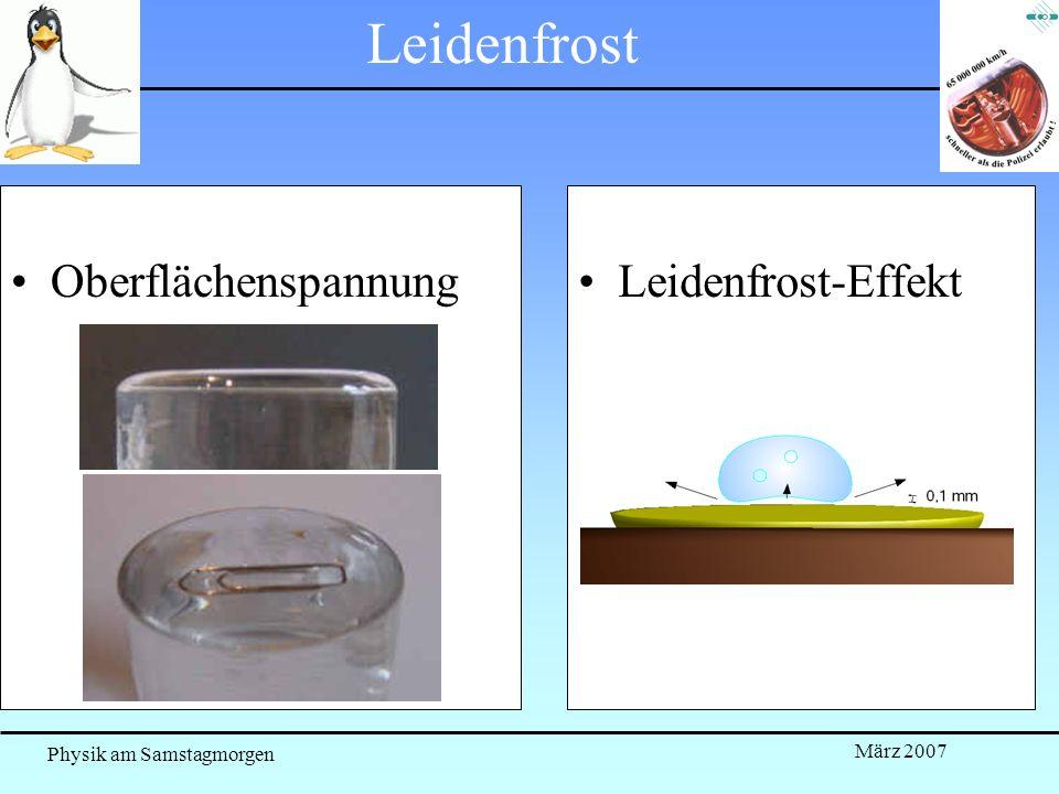 Physik am Samstagmorgen März 2007 Leidenfrost OberflächenspannungLeidenfrost-Effekt