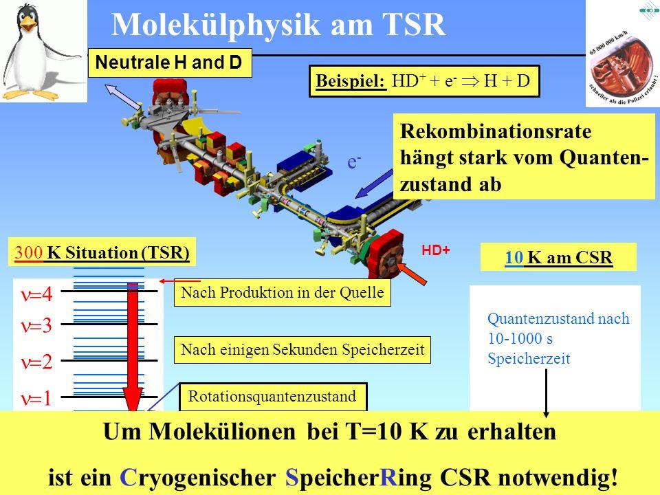 Physik am Samstagmorgen März 2007 Molekülphysik am TSR Beispiel: HD + + e - H + D Neutrale H and D e-e- HD+ 10 K am CSR J Quantenzustand nach 10-1000