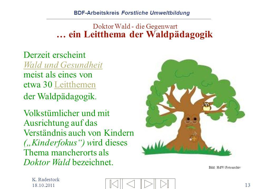 BDF-Arbeitskreis Forstliche Umweltbildung K. Radestock 18.10.2011 13 Doktor Wald - die Gegenwart … ein Leitthema der Waldpädagogik Derzeit erscheint W