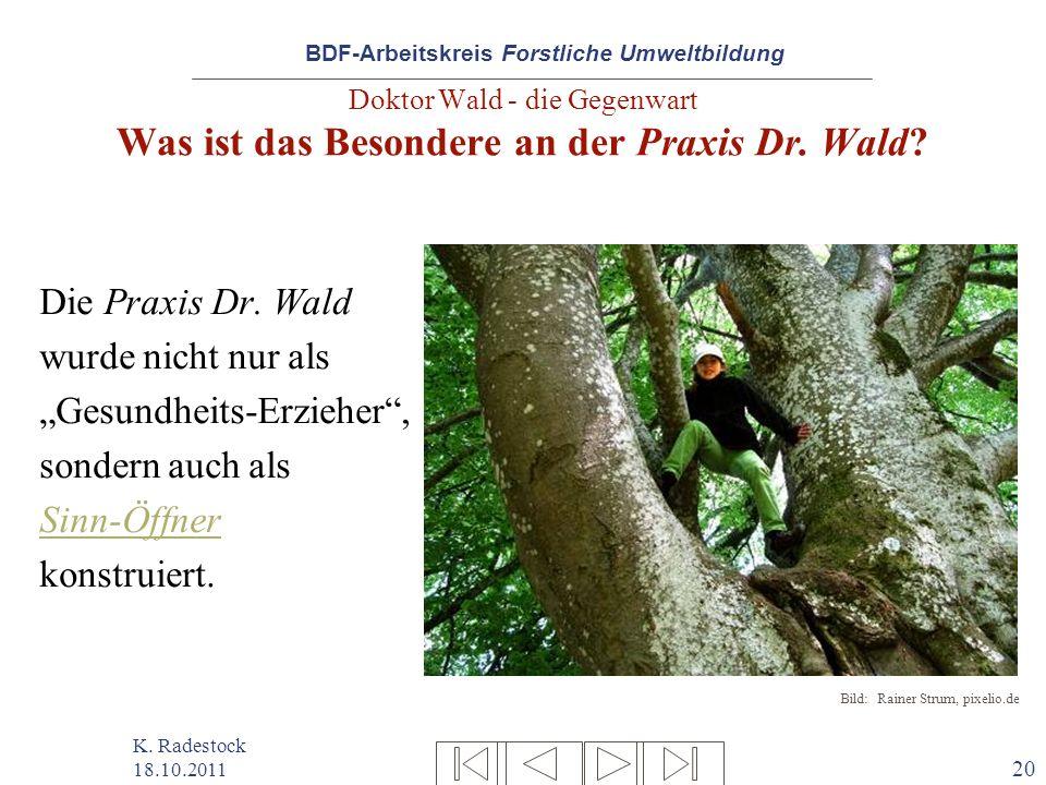 BDF-Arbeitskreis Forstliche Umweltbildung K. Radestock 18.10.2011 20 Doktor Wald - die Gegenwart Was ist das Besondere an der Praxis Dr. Wald? Die Pra