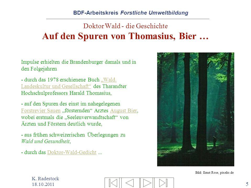BDF-Arbeitskreis Forstliche Umweltbildung K. Radestock 18.10.2011 5 Doktor Wald - die Geschichte Auf den Spuren von Thomasius, Bier … Impulse erhielte