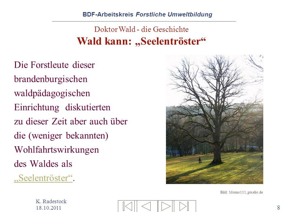 BDF-Arbeitskreis Forstliche Umweltbildung K. Radestock 18.10.2011 8 Die Forstleute dieser brandenburgischen waldpädagogischen Einrichtung diskutierten