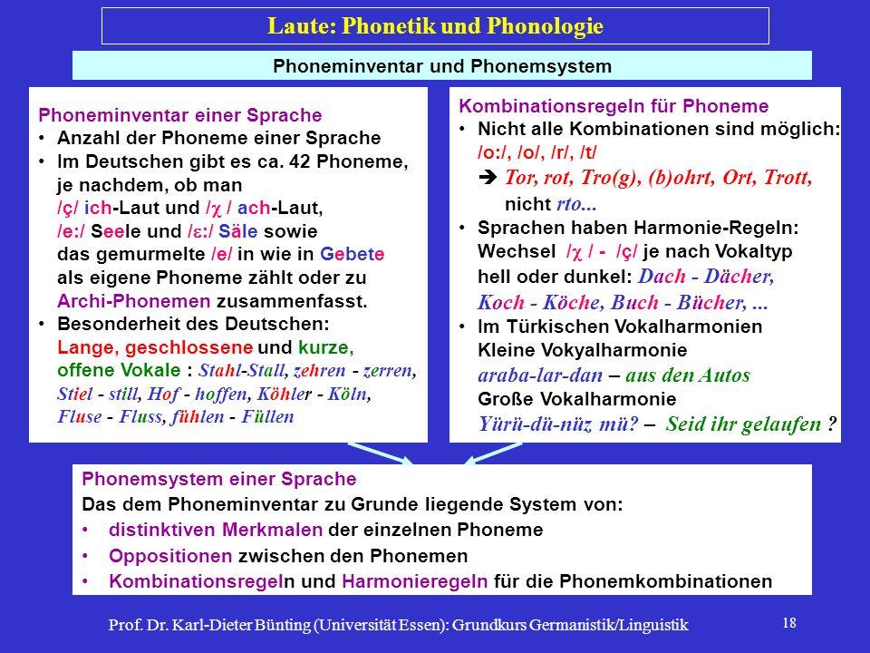 Prof. Dr. Karl-Dieter Bünting (Universität Essen): Grundkurs Germanistik/Linguistik 18 Phoneminventar und Phonemsystem Phoneminventar einer Sprache An