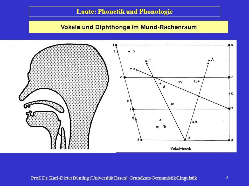 Prof. Dr. Karl-Dieter Bünting (Universität Essen): Grundkurs Germanistik/Linguistik 3 Vokale und Diphthonge im Mund-Rachenraum Laute: Phonetik und Pho