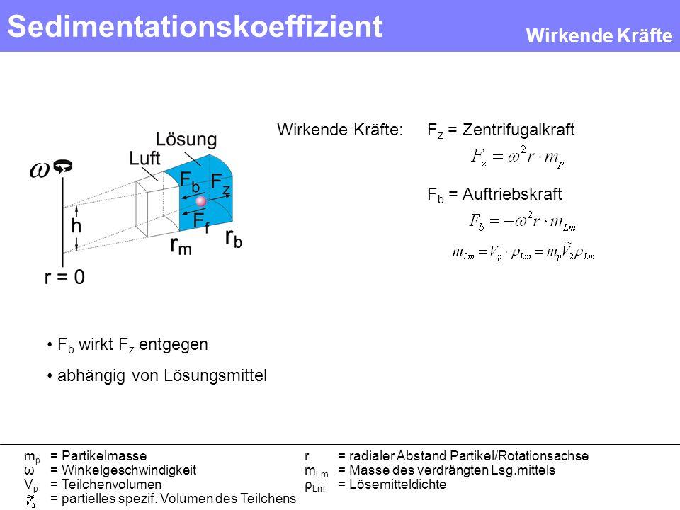Sedimentationskoeffizient F z = Zentrifugalkraft F b = Auftriebskraft Wirkende Kräfte: F b wirkt F z entgegen abhängig von Lösungsmittel Wirkende Kräf