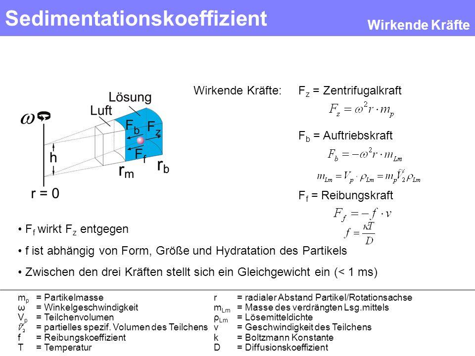 Sedimentationskoeffizient F z = Zentrifugalkraft F b = Auftriebskraft F f = Reibungskraft Wirkende Kräfte: F f wirkt F z entgegen f ist abhängig von F