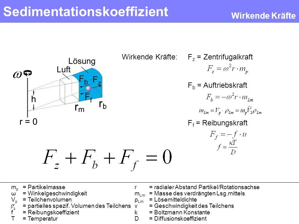 Sedimentationskoeffizient F z = Zentrifugalkraft F b = Auftriebskraft F f = Reibungskraft Wirkende Kräfte: Wirkende Kräfte m p = Partikelmasser = radi