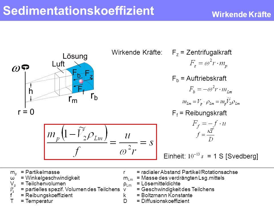Einheit: = 1 S [Svedberg] Sedimentationskoeffizient F z = Zentrifugalkraft F b = Auftriebskraft F f = Reibungskraft Wirkende Kräfte: Wirkende Kräfte m